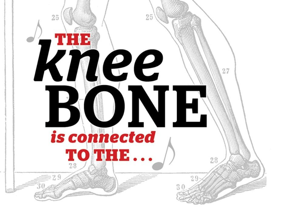 Title: The Knee Bone is connected to the.... Image::Drawing of bones in the lower legs and feet of a human
