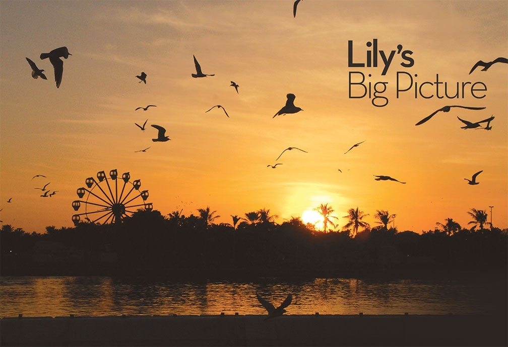Bandek photograph. The glowing sun illuminates the bay as it drops deeper into the burnt orange sky beyond the horizon as a Ferris Wheel and palm trees reach above the dark landscape. Silhouettes of seagulls swoop in the foreground.