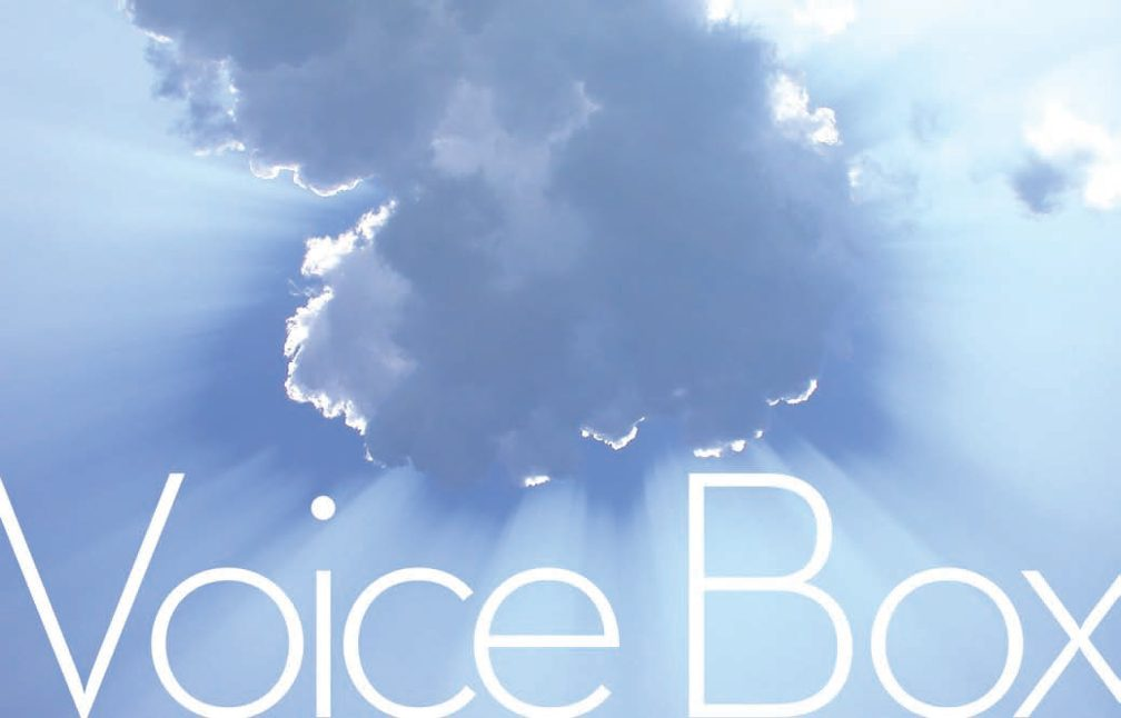 Title: Voice Box. Image: Sun beams jutting out from around a dark cloud in a light blue sky.