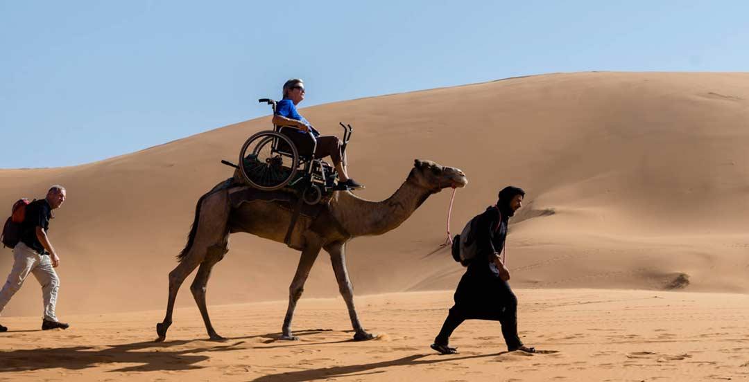 Native hotel camel safari
